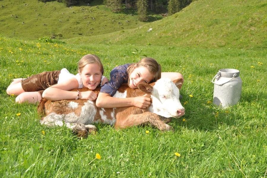 4 days farm holiday